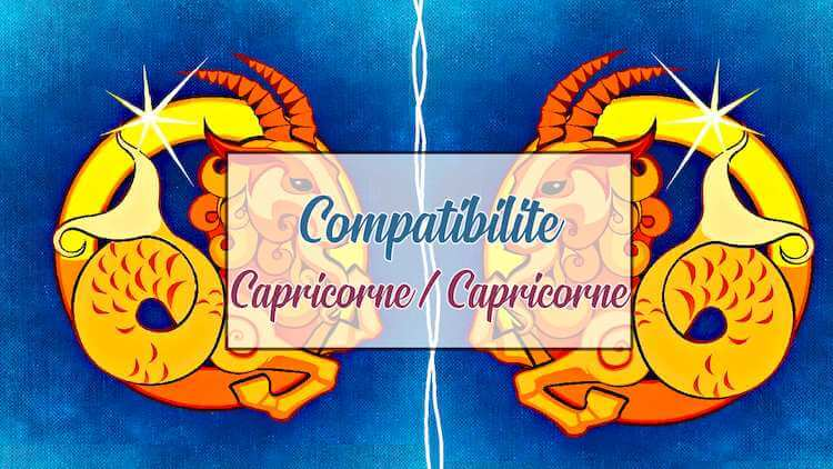 Compatibilite-Capricorne-Capricorne