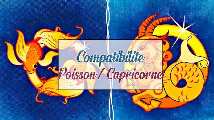 Compatibilite-Poisson-Capricorne
