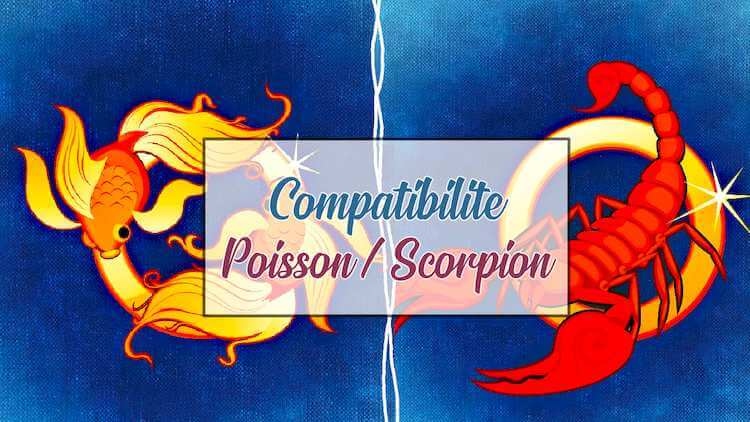 Compatibilite-Poisson-Scorpion