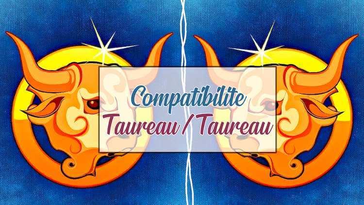 Compatibilite-Taureau-Taureau